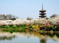 Wuhan Attractions Guide