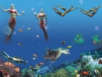 Xiaomeisha Sea World, Xiaomeisha Sea World Guide, Xiaomeisha Sea World Travel Tips, Xiaomeisha Sea World Information.