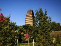 Small Wild Goose Pagoda, Small Wild Goose Pagoda Guide, Small Wild Goose Pagoda Travel Tips.