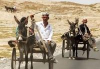 Getting around in Kashgar, Kashgar Traffic, Kashgar Transportation, Kashgar Transport Information.