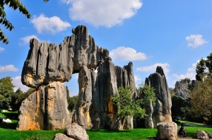 stone forest 11 Days