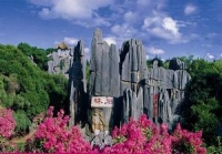 Stone Forest, Stone Forest Guide, Stone Forest Travel Tips, Stone Forest Travel Information.