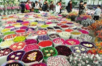 Flower & Bird Market, Flower & Bird Market Guide, Flower & Bird Market Travel Tips, Flower & Bird Market Travel Information.